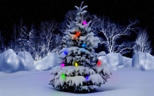 Christmas-Tree-Wallpapers-Pictures[1]